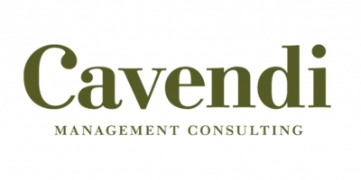 Cavendi - Management Consulting